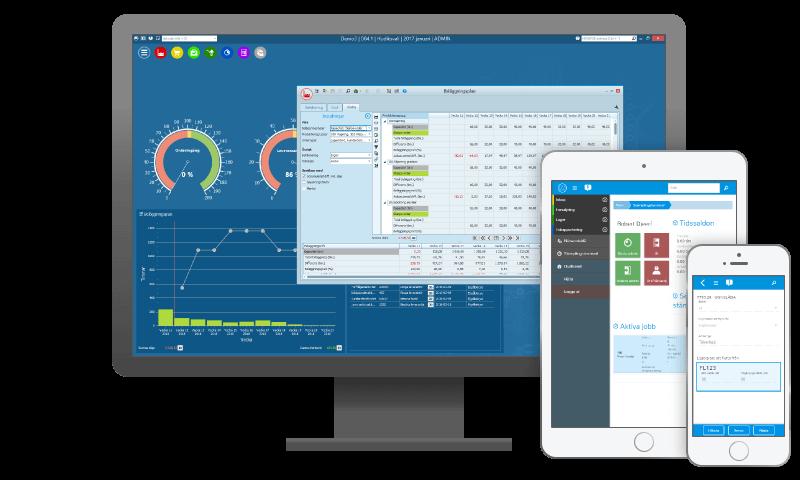 Monitor ERP